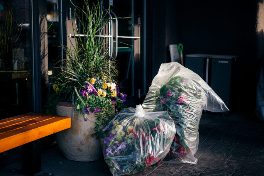 Photograph of a street scene with flowers and plants in a large planter, with two plastic bags filled with more flowers and plants to the right