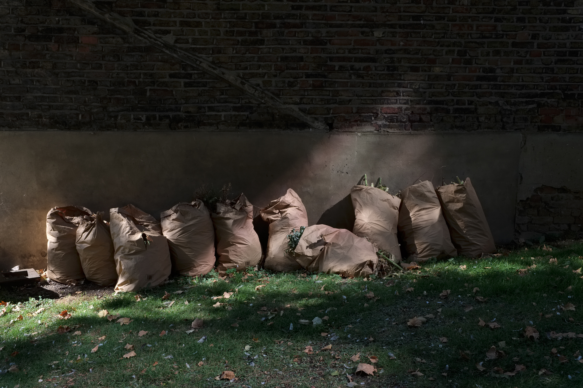 patches of light falling on a row of paperbags filled with garden waste leaning against a wall