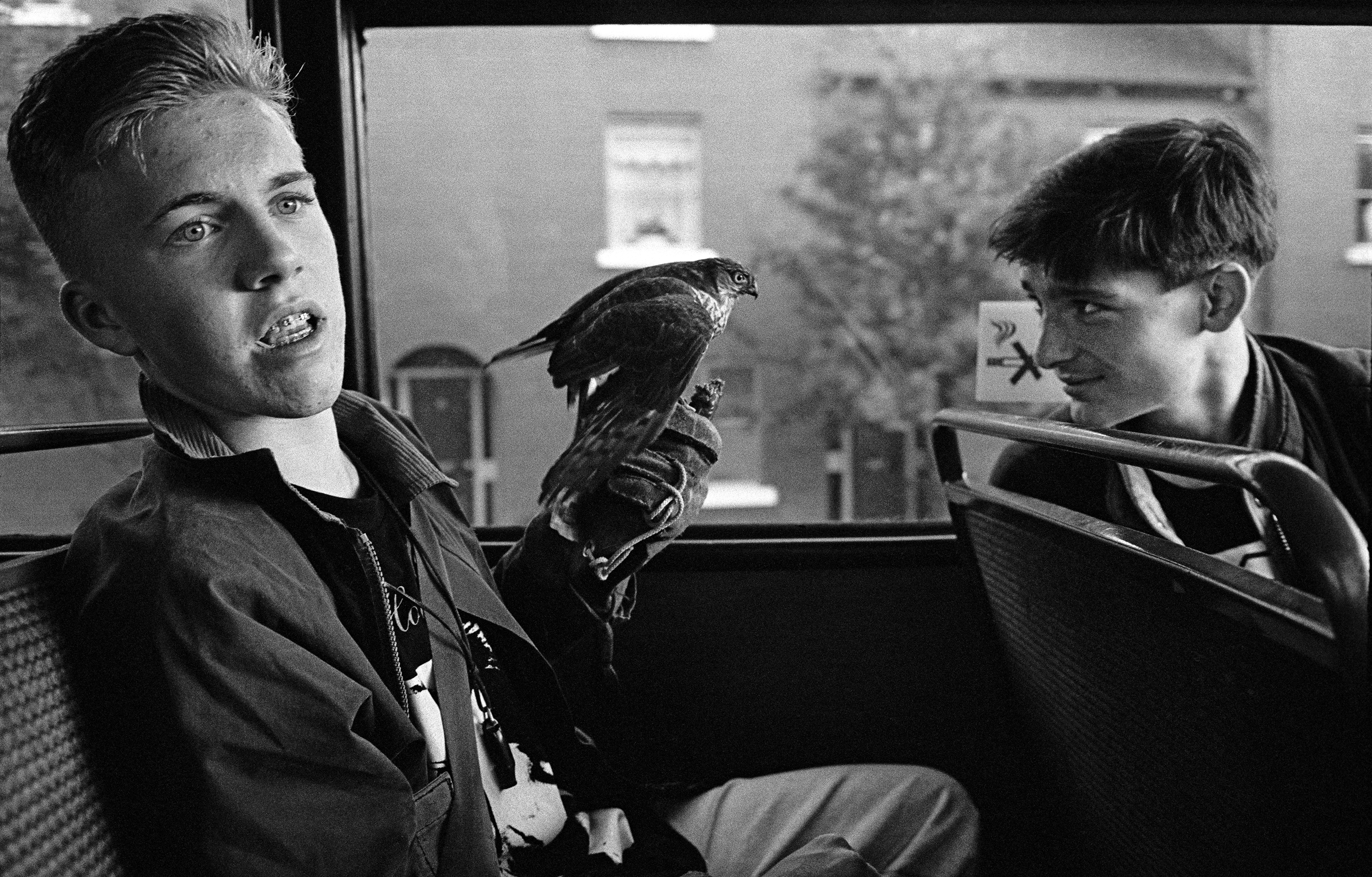 side close-up of 2 boys sitting in a bus, one is holding a bird on his left hand, the other - sitting on the chair in front of him, is looking back at the bird