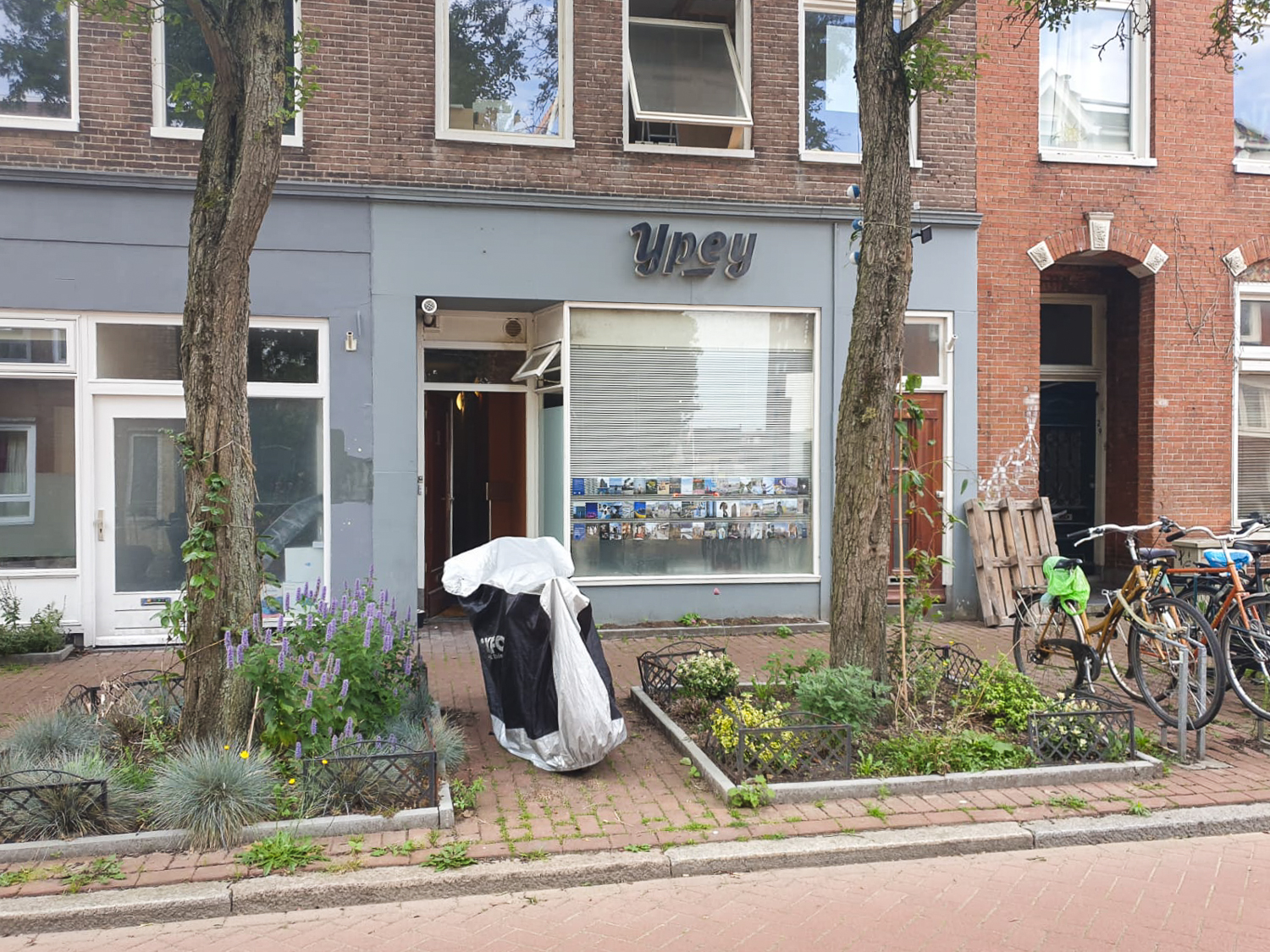 Exhibition of postcards displayed in a large window on a street in Groningen, The Netherlands, with 'a sign reading 'Ypey' above, trees and plants in the pathway in front.