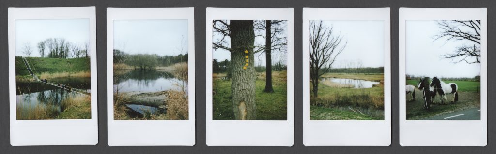 5 instax polaroids with landscape green and one bridge through water