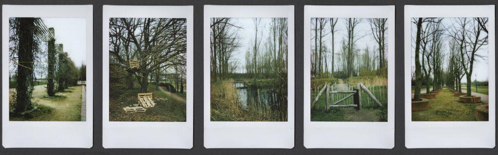 5 instax polaroids with landscape park