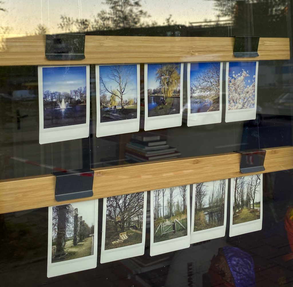 10 photos printed and displayed in a window