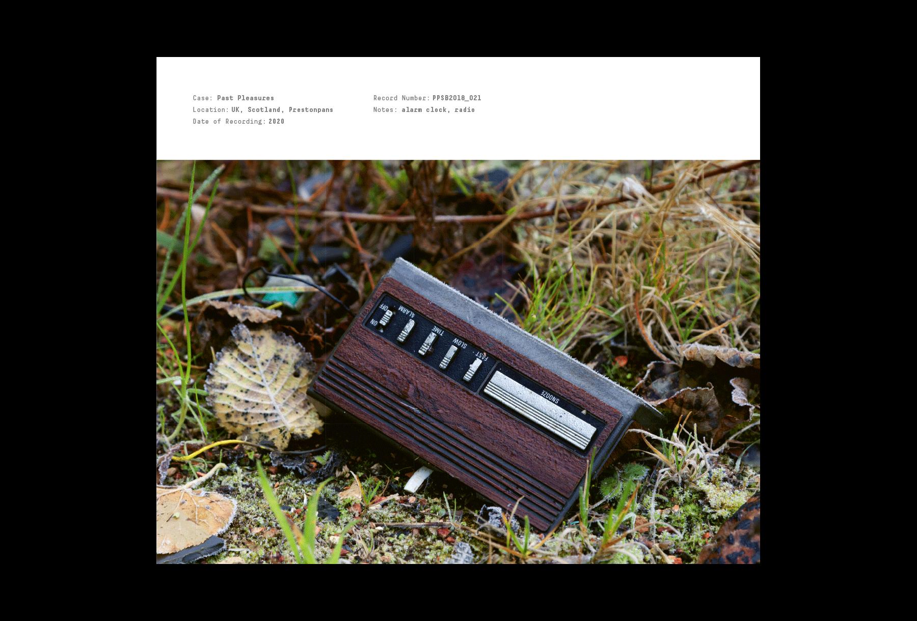 Radio decaying on the ground